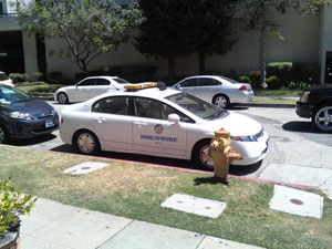 Parking Enforcement illegally parking